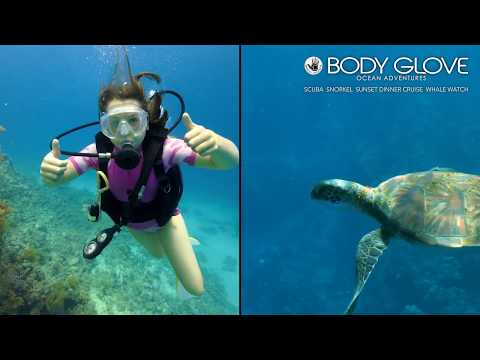 Body Glove Deluxe Morning Snorkel