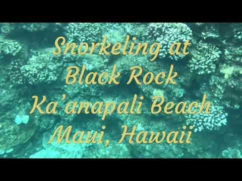 Snorkeling at Black Rock Kaanapali Beach Maui Hawaii