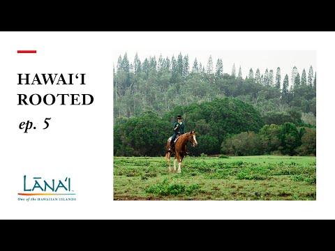 Lanai Through My Eyes: Hawaii Rooted