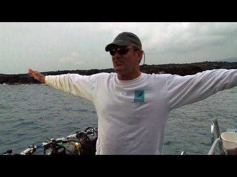 What is Manta ray night dive at Garden Eel Cove