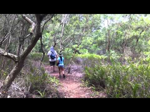 Mahana Ridge Hike at Kapalua, Maui
