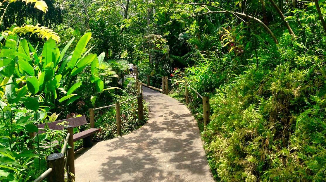 htbg, hawaii tropical botanical gardens, big island, botanical garden