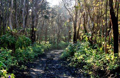 volcano village roads