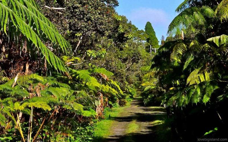 volcano village road