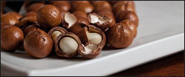 dried macadamia nuts