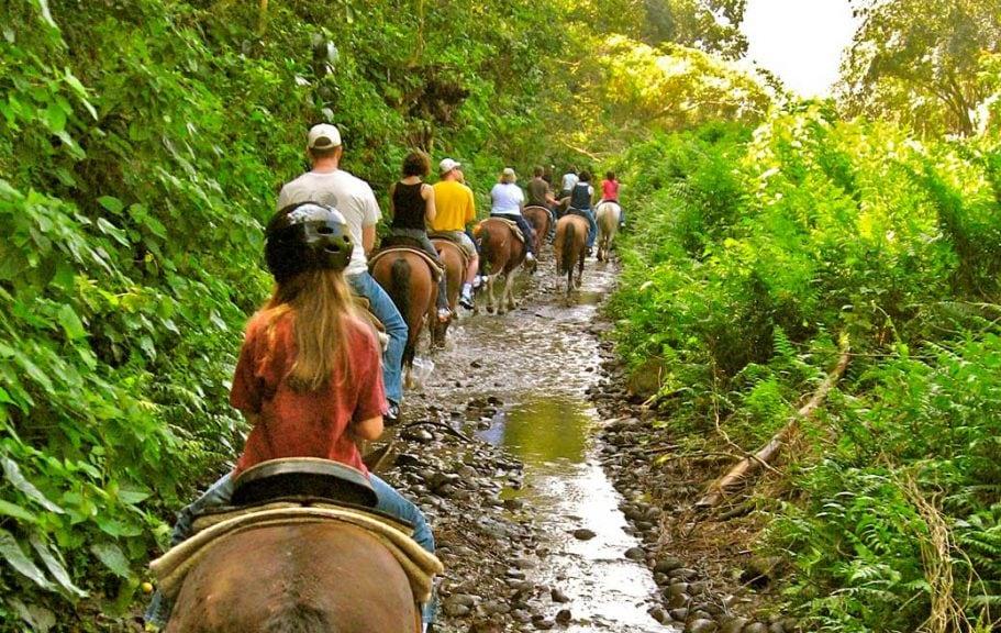 horseback riding in Waipi'o valley
