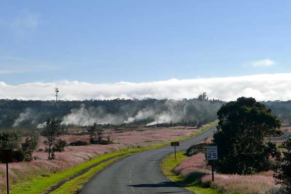 Sunrise at the steam vents in Hawaii Volcanoes National Park