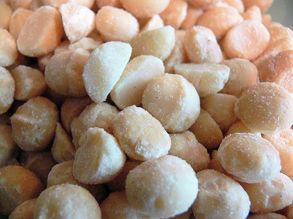 Salted macadamia nuts
