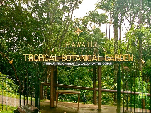 Hawaii Tropical Botanical Gardens
