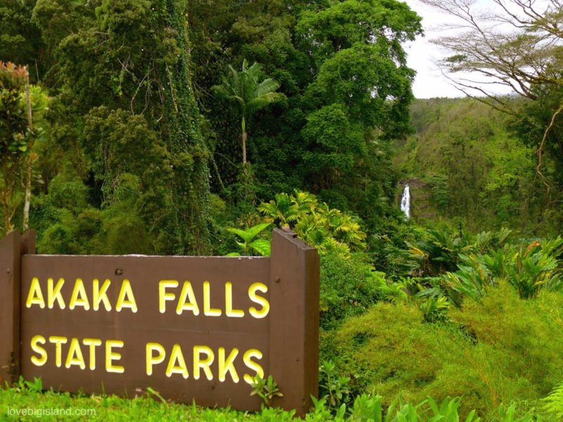 akaka falls, big island, waterfall