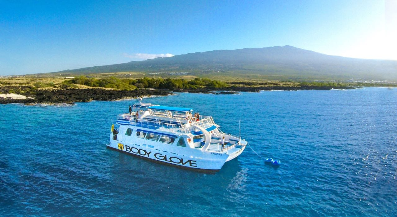 Whale Watching Cruise from Kona