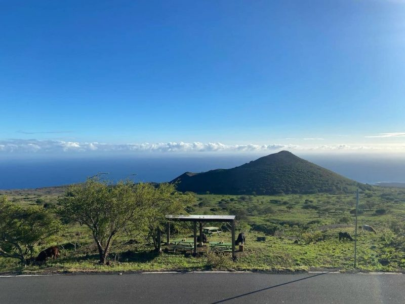 The view from Bullys Burgers on Maui