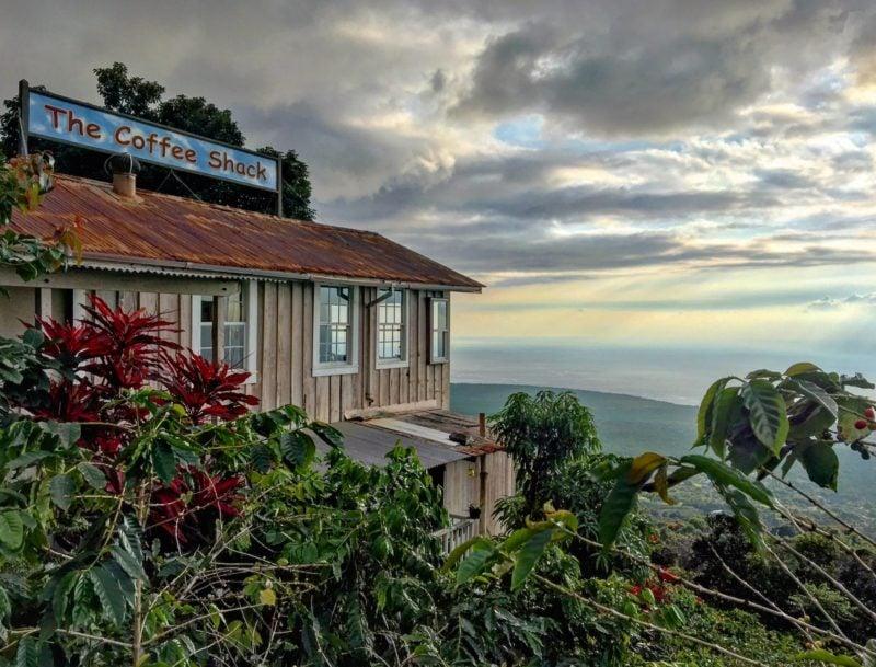 coffee shack view