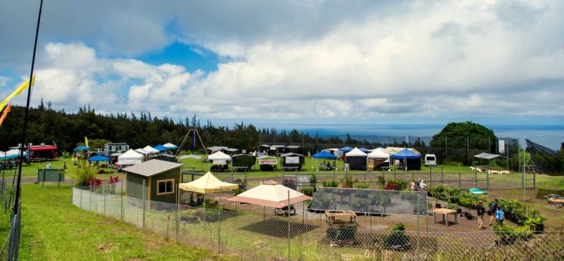 hamakua harvest farmers market, overview, big island, hawaii