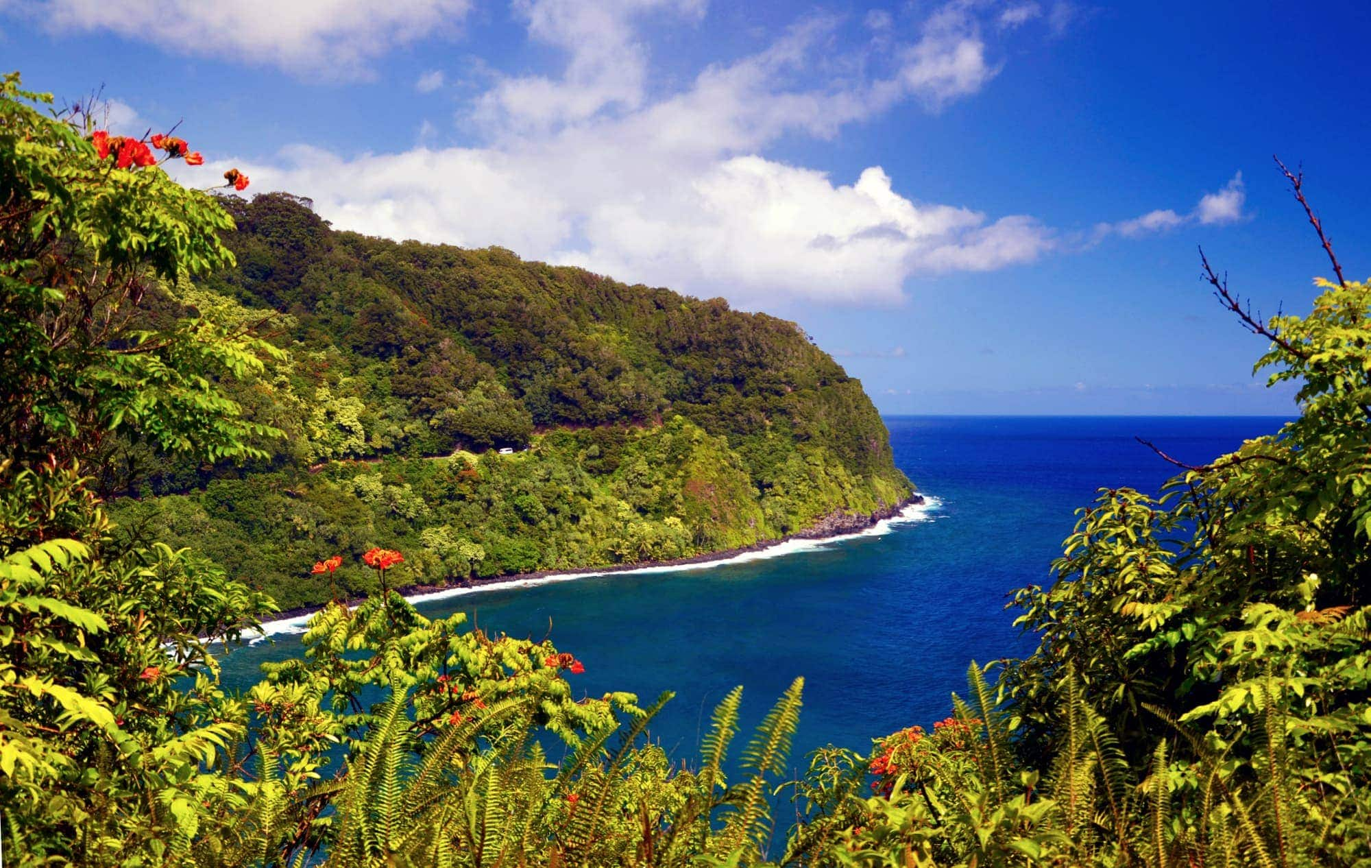 An Overview of Maui