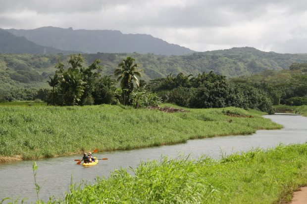 A couple kayaking the Hanalei River