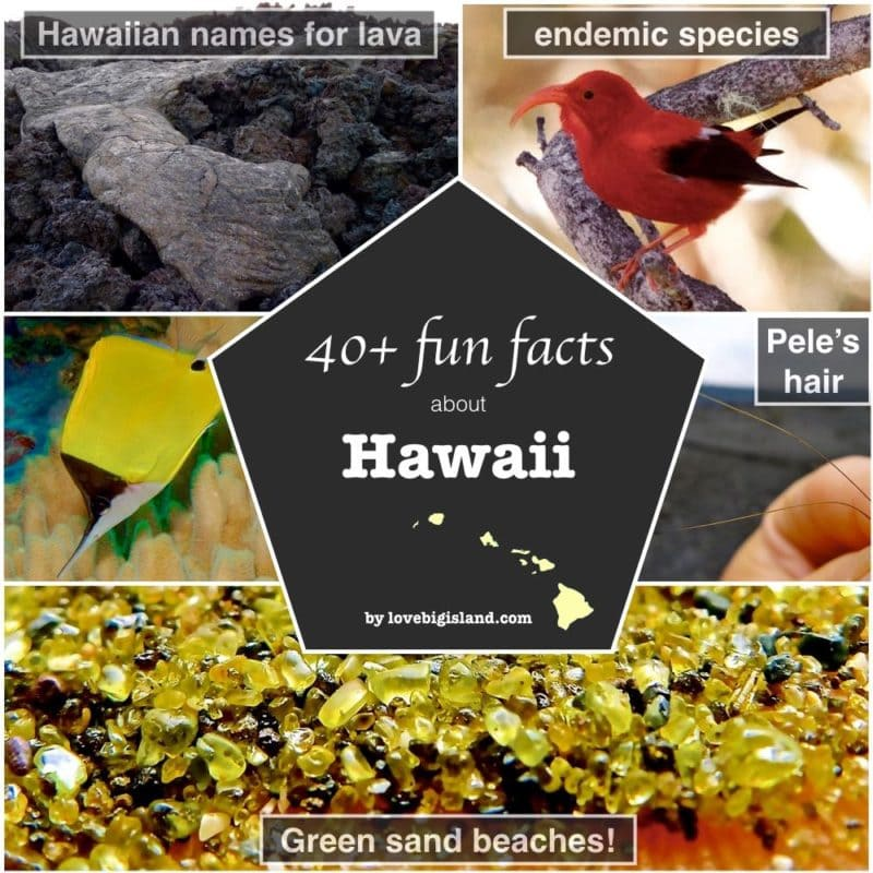 Big island hawaii, trivia, things to know, factosheet