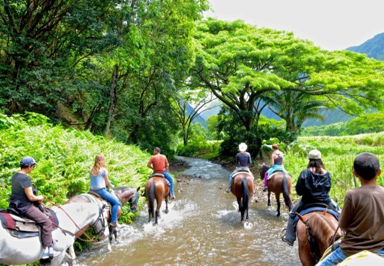 big island, horseback riding tour
