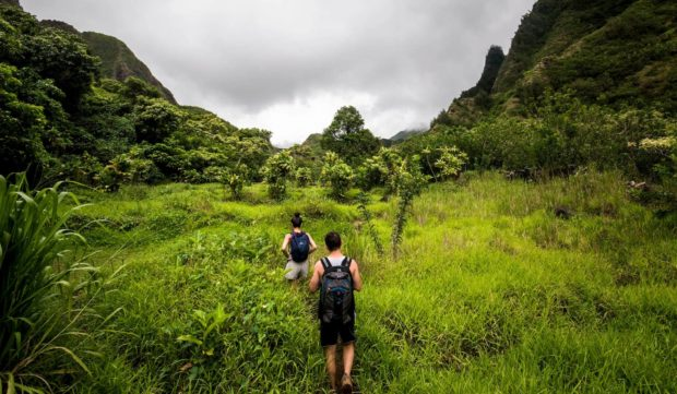 people hiking in Iao Valley
