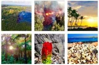 instagram, follow, love big island