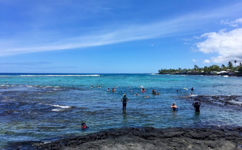 people snorkeling at Kahalu'u bay