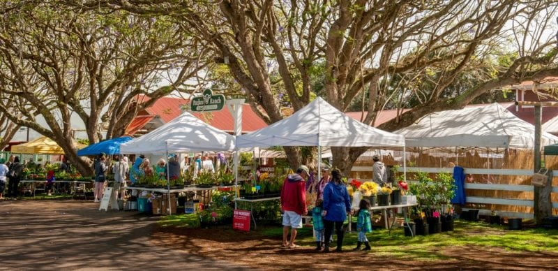 The Kamuela Farmers market is opened every saturday between 0900 and noon. Find them at the historic Pukalani Stables. Image courtesy of the Kamuela Farmers Market.