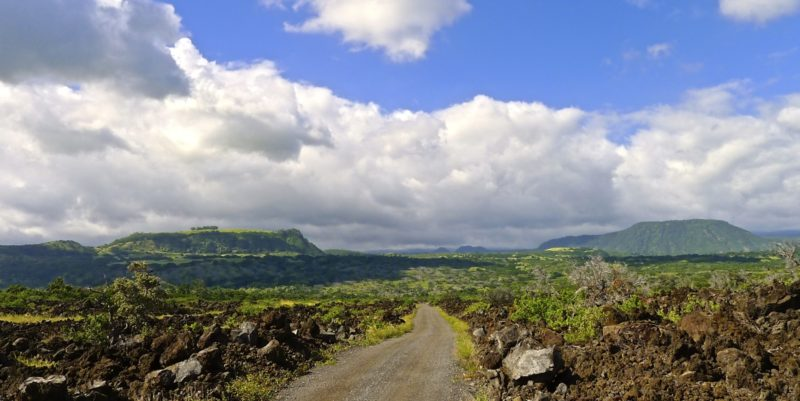 kau, scenic drive, big island, plantation road, hawaii