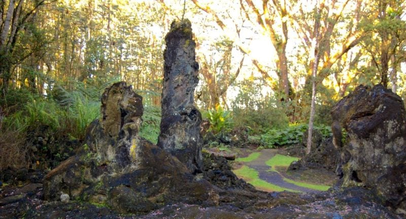 lava tree, lava mold, lava tree state park