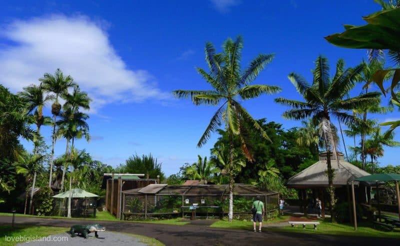 Panaewa zoo, hilo, big island, botanical garden
