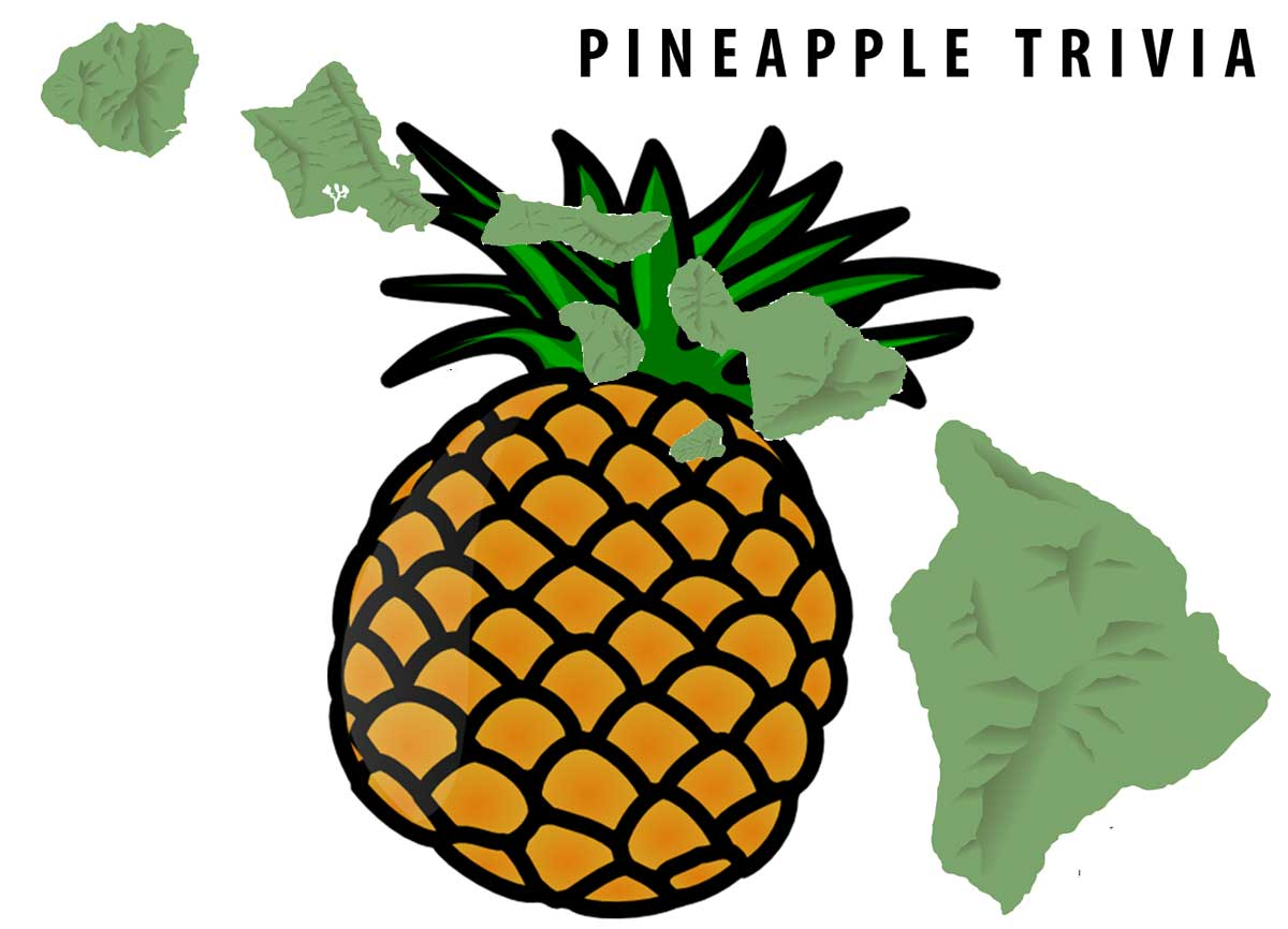Pineapples in Hawaii: 🍍history, 🍍facts and 🍍trivia