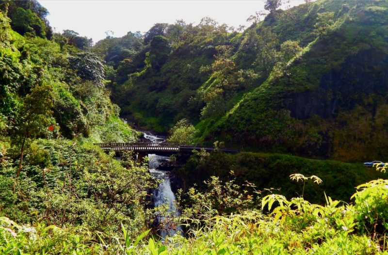 One-lane bridge and waterfall on the road to Hana