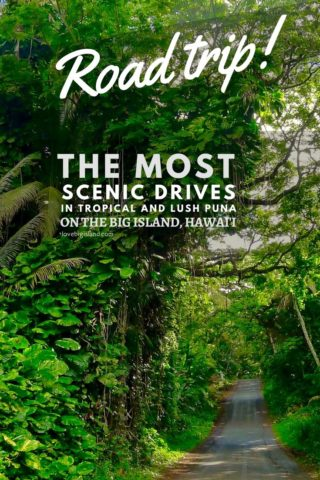 road trip, scenic drive, red road, puna, hawaii, big island