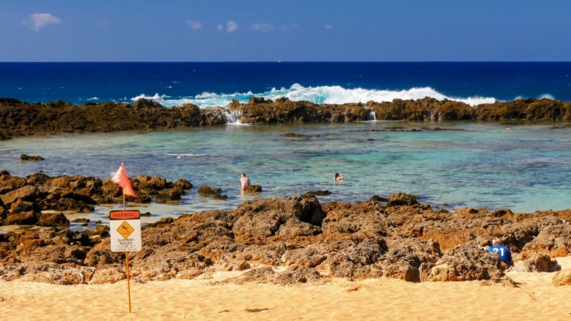 People snorkeling at shark cove on Oahu