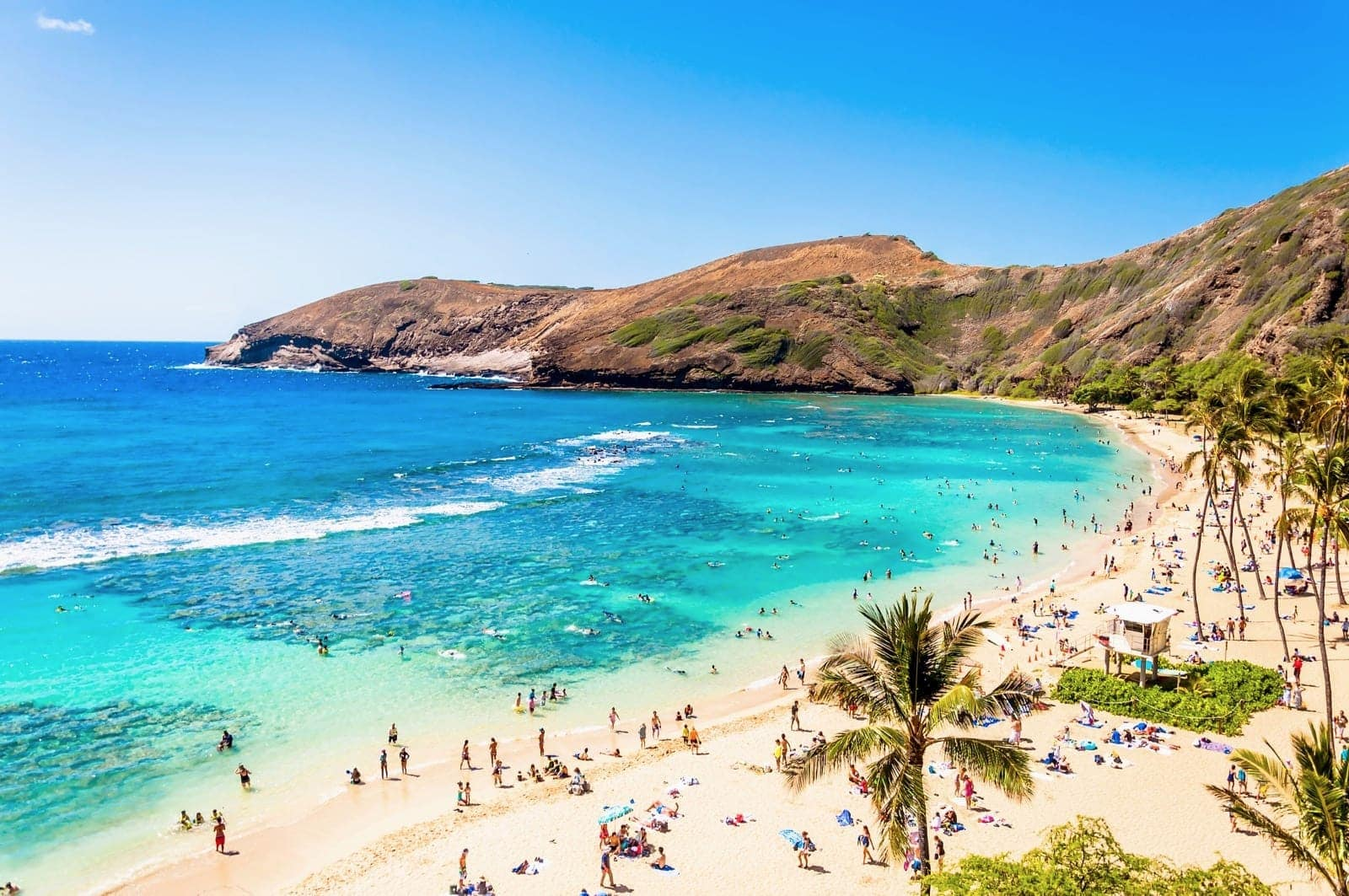 2019 Coronavirus / COVID-19 and your trip to Hawaii