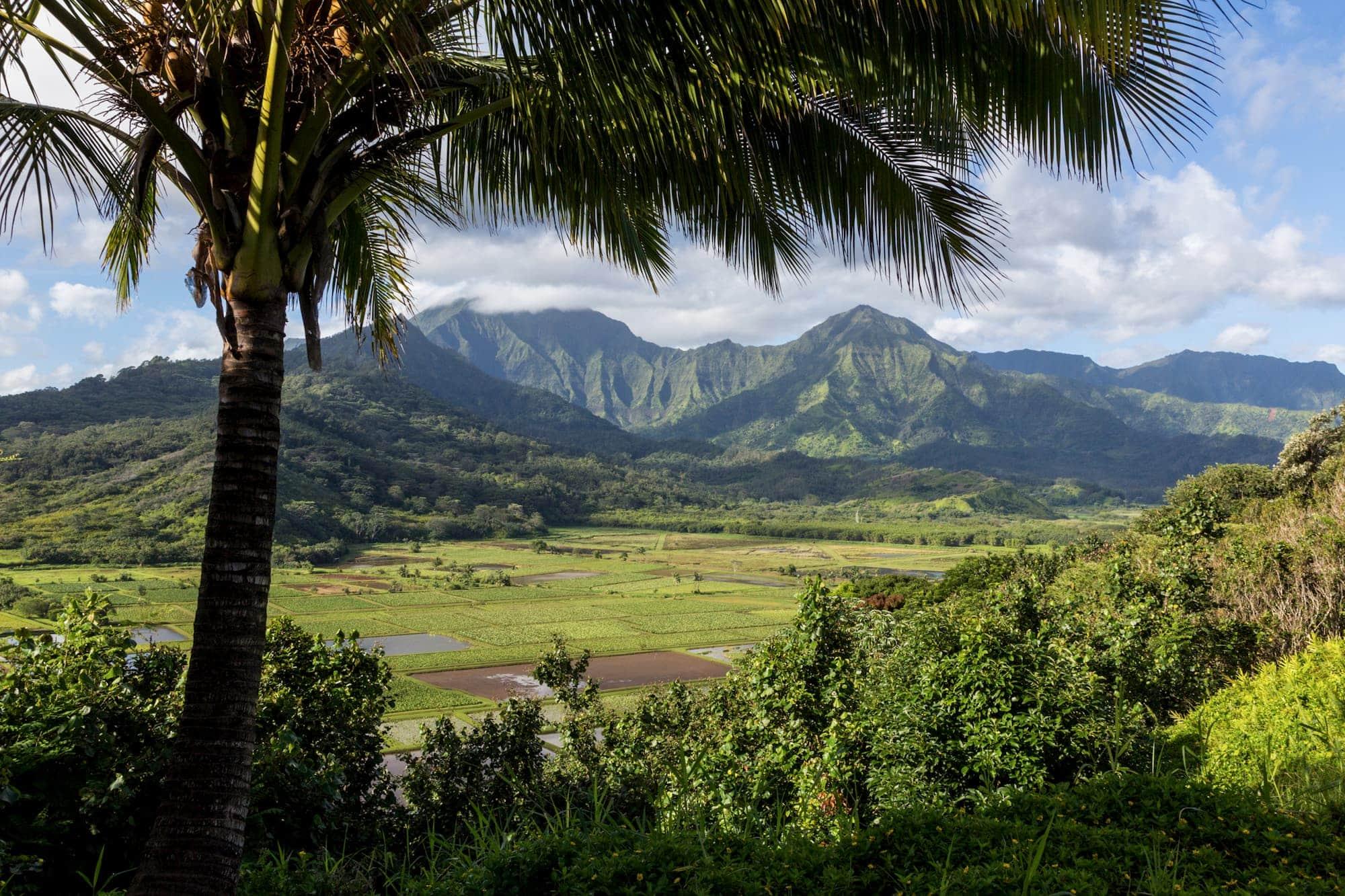 Big Island vs Kauaʻi