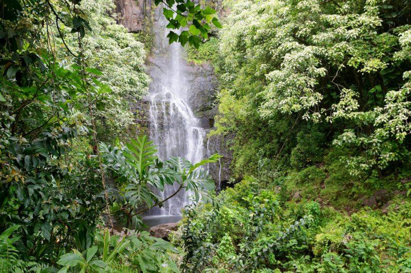 Upper Waikani Falls from the road