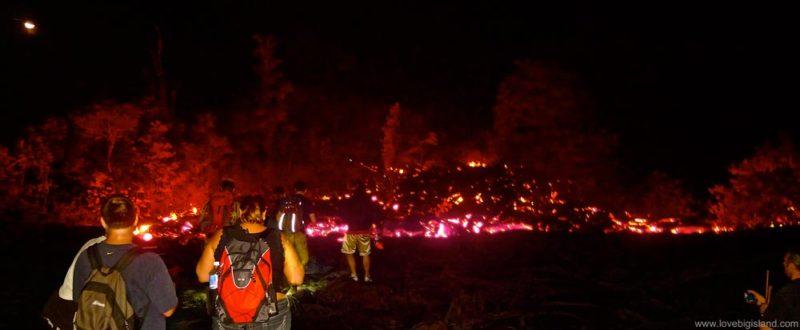 Visit to the Kalapana lava flow