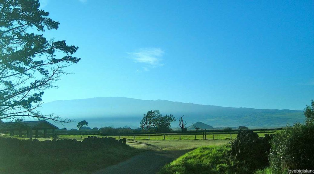 Waimea Activities Attractions And Culture Big Island