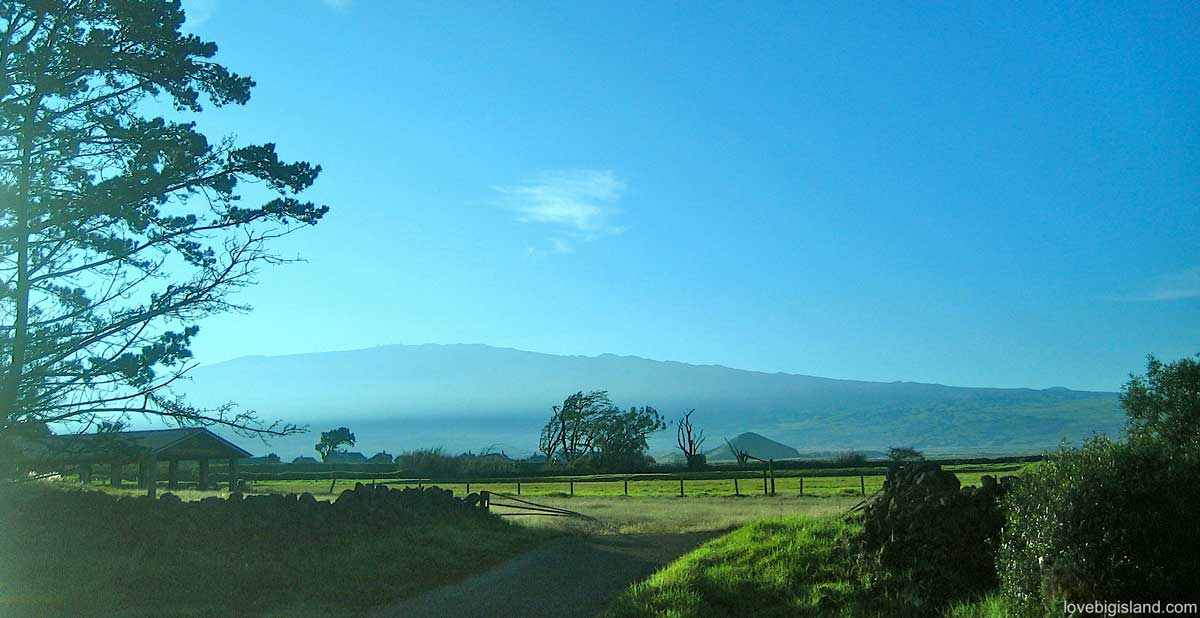 Waimea or Kamuela on the Big Island  Hawaii
