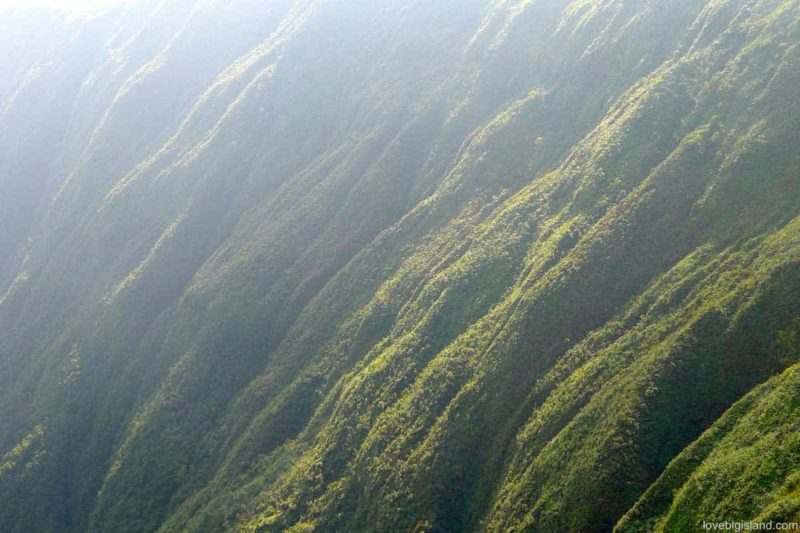 Waipio valley is one of our favorite places for a hike