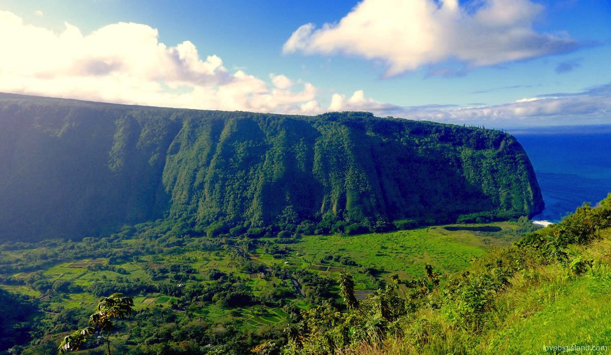 Waipi'o Valley Explorer (down into the valley, from Kona and Hilo)
