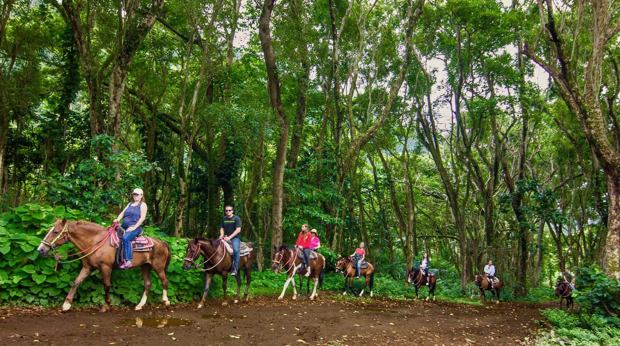 Waipiʻo Valley on Horseback